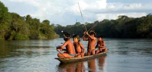 Latinam amazonfloden